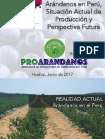 Rodrigo-Manzo-Arandano-en-Perú-FRESHUELVA-2017 selecionado 3