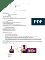 monografia componentes de protesis de miembro superior.Elizabeth.docx