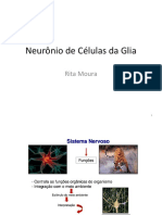2. Aula neurônio e cel Glia