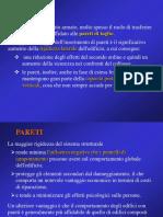 19 CA Pareti