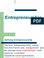 Entrepreneurs Characteristics, Functions & Types
