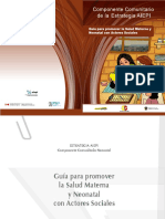 AEPI SALUD MATERNA.pdf