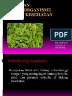 Tugas Presentasi Peranan Mikroorganisme Dalam Bidang Kesehatan-Kelas 3Dk
