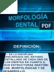 Morfología dentaria.pdf