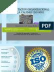 17.Implantacion.pdf
