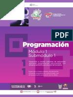87058031-Guia-formativa-PROGRAMACION-11-CECyTEH-2012-Gobierno-Hidalgo.pdf