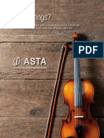 ASTA Why Strings Brochure IA
