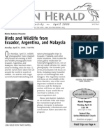 April 2008 Heron Herald Newsletter Rainier Audubon Society