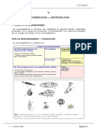 ING MICROBIOLOGICA.pdf