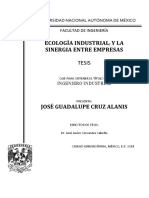 Tesis José Gpe. Cruz Alanis.pdf