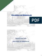 41762870-Molienda.pdf