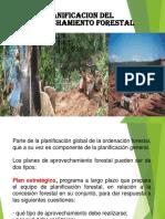 Clases Planificación Explotación Forestal