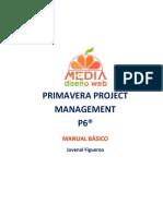 P6_Manual_Basico_Juvenal.pdf