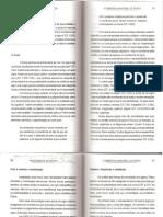 Panorama_da_Semiótica_de_Platão_a_Peirce_[pg.78_a_148].pdf