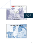 Pulsologia Aula.pdf