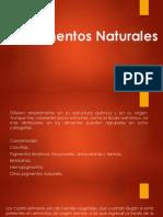 Pigmentos Naturales, Quimica de Los Alimentos