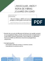 Fatiga Muscular, Nnos y Atrofia de Fibras