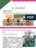 Danilsa Valdez reyes.pptx