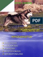 hemoparasitoscaninos-130319212123-phpapp02 (1).ppt