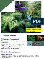Ch 07 Photosynthesis.pdf
