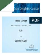 GK-EMEA Certificate (7)Marwan