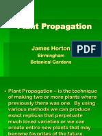Mg Plant Prop