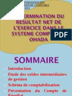 Determination Du Resultat Net de l'Exercice Dans Le