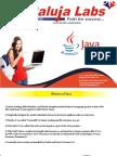Java Training in uttam nagar