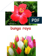Bunga Nama