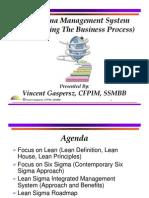6811332 Lean Six Sigma Presentation 1