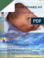 1. Fisiologi Kehamilan & Persalinan