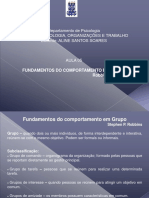 5ª Aula - Fundamentos Do Comportamento Em Grupo