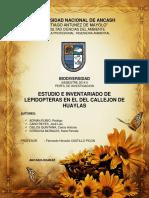 Lepidopteras.pdf