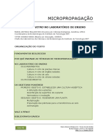 80_Micropropagacao_laboratorio_ensino.pdf
