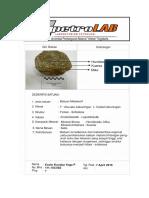 Deskripsi Petro - Metamorf.docx