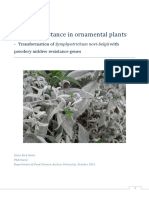Disease Resistance In OrnamentalPlants