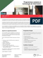 Aec Programmeur Analyste PdfBrochure Fr