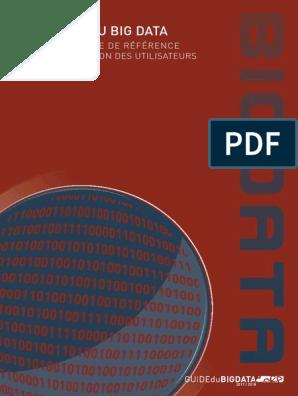 Guide Du Big Data 2017 2018 Big Data Internet Des Objets