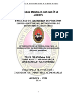 LICOR.pdf