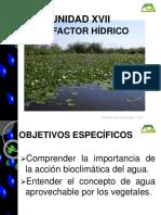Unidad XVII-Factor Hidrico