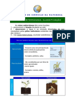02_RAIZES_SUB_TIPOS=CM.pdf