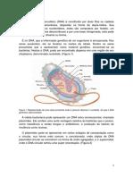 Introduçãobiomol1 (1)
