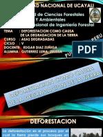 Deforestacion Como Causa de La Degradacion de La Tierra