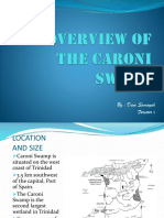 An Overview of the Caroni Swamp