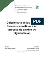 Colorimetria de Las Bellis Perennis Sometidas a Un Proceso de Cambio de Pigmentación