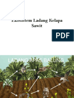 Ekosistem Ladang Kelapa Sawit