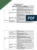 294400717-DIVERSIFICACION-CURRICULAR-DE-1-AL-6-GRADOS-DE-ED-PRIMARIA.docx