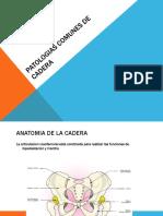 Patologias Comunes de Cadera