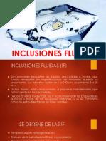 INCLUSIONES FLUIDAS