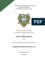 63221 Rodriguez Mendoza, Ramiro Memoria 2